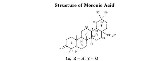 Moronic