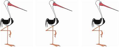 Gilbert Stork