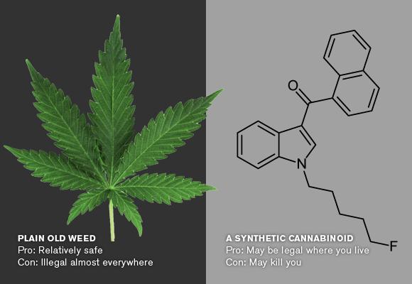 Natural cannabis vs synthetic cannabinoids